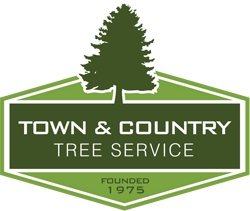 Town and Country Tree Service